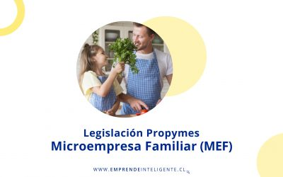 Microempresa Familiar (MEF)